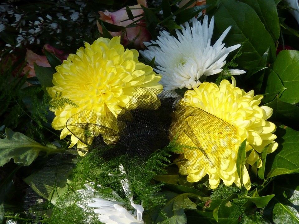The language of flowers and how they help the grieving process flowers mightylinksfo